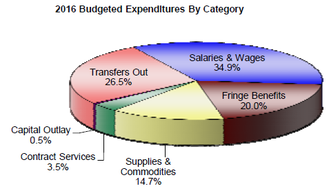 2016 Budgeted Expenditures By Category.PNG
